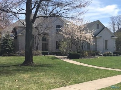 647 Lost Lakes Drive, Holland, OH 43528 - #: 6038742