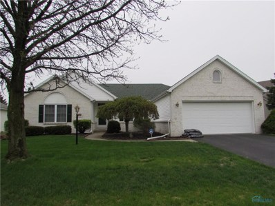 243 Mead Lane, Holland, OH 43528 - #: 6039394