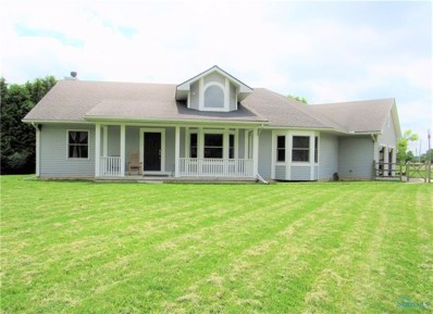 17610 Henry Wood Co Line Road, Grand Rapids, OH 43534 - #: 6041440