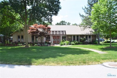 132 Riverview Drive, Woodville, OH 43469 - #: 6041937
