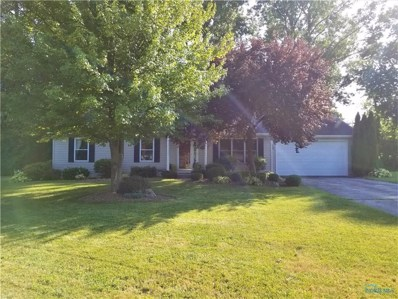 508 S Hill Park Drive, Holland, OH 43528 - MLS#: 6043856