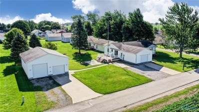 116 Fairview Street, Lyons, OH 43533 - #: 6044026
