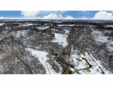 0 Twp Road 169, West Liberty, OH 43357 - MLS#: 414979