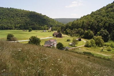 1533 S Black Valley Road, Clearville, PA 15535 - MLS#: 55562