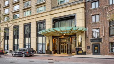 800 N Michigan Avenue UNIT 4301, Chicago, IL 60611 - #: 09871938
