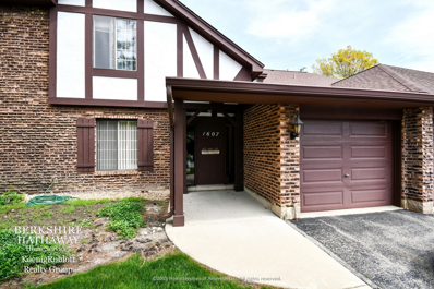 1607 Thames Court UNIT B, Wheaton, IL 60189 - #: 10061802