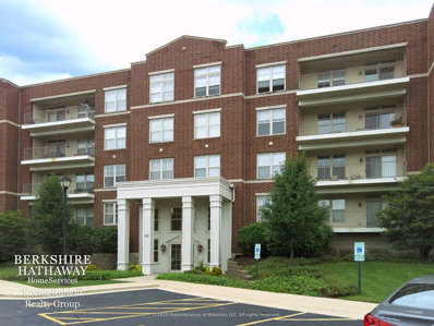 720 Prestwick Lane UNIT 203, Wheeling, IL 60090 - #: 10064264