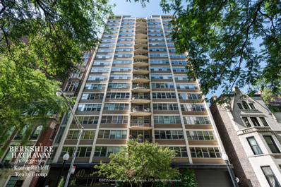 40 E Cedar Street UNIT 14D, Chicago, IL 60611 - #: 10124056