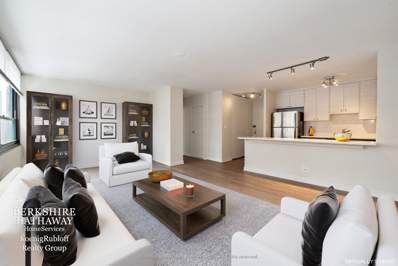 33 E Cedar Street UNIT 15B, Chicago, IL 60611 - #: 10254594