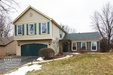 2164 Blacksmith Drive, Wheaton, IL 60189 - #: 10292165