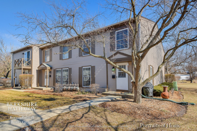 1230 Bunker Hill Court UNIT C, Wheaton, IL 60189 - #: 10304810