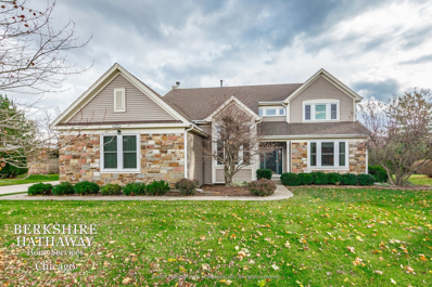 14355 Spring Meadow Court, Green Oaks, IL 60048 - #: 10567041