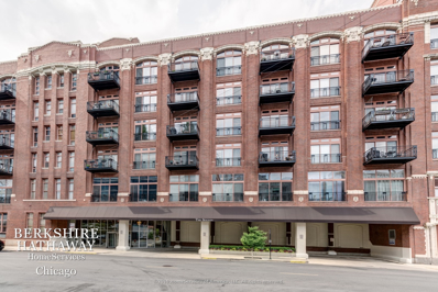 360 W Illinois Street UNIT 213, Chicago, IL 60654 - #: 10602965