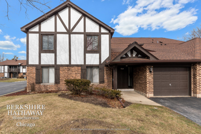 865 Sheldon Court UNIT A, Wheaton, IL 60189 - #: 10623883