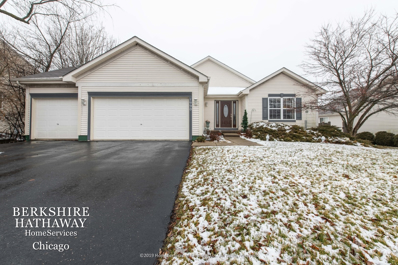 1990 W Overlook Court, Round Lake, IL 60073 - #: 10665645