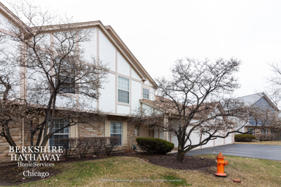 2325 Worthing Drive #101B, Naperville, IL 60565 - #: 10667961