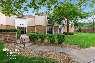 460 74th Street #102, Downers Grove, IL 60516 - #: 10836066