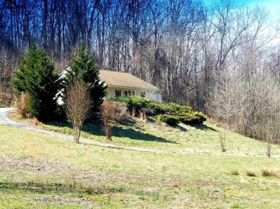 1610 Moormans Road, Lynchburg, VA 24501 - MLS#: 310566