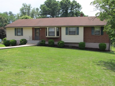 1041 Dandridge Drive, Lynchburg, VA 24501 - MLS#: 311000