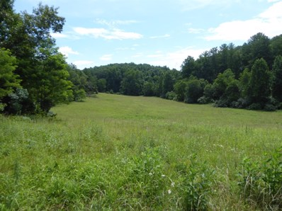Minors Mountain Trail, Monroe, VA 24574 - MLS#: 312903