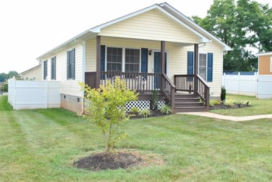 231 Stoneridge Street, Lynchburg, VA 24501 - MLS#: 313269