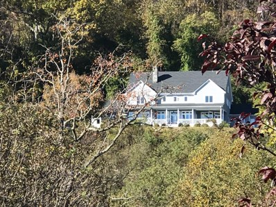 1261 Spring Mountain Road, Lynchburg, VA 24503 - MLS#: 315249