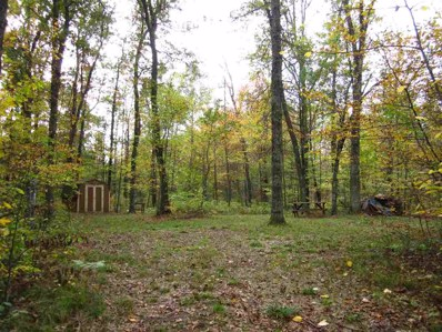 W1457  Red Cloud UNIT 21, Keshena, WI 54135 - MLS#: 50156535