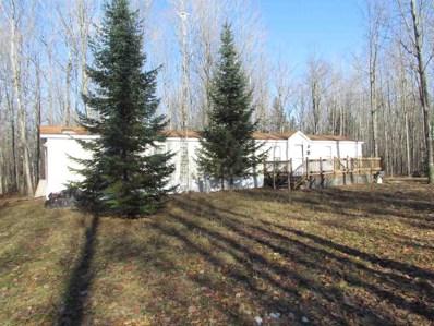 17275 Snowmobile, Townsend, WI 54174 - MLS#: 50175375