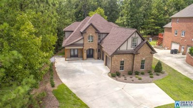 6198 Eagle Point Cir, Birmingham, AL 35242 - #: 785956