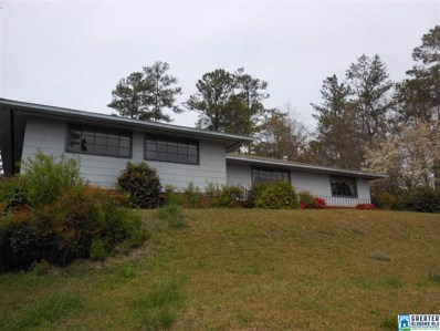 23831 Hwy 9, Goodwater, AL 35072 - #: 811340
