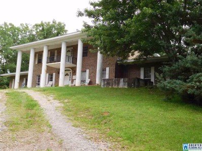22883 Hwy 9, Goodwater, AL 35072 - #: 818733