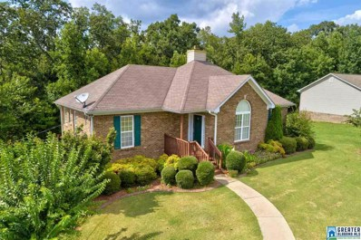 205 Crooked Creek Ln, Odenville, AL 35120 - #: 825206