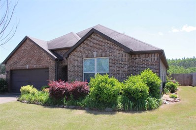 339 Blackberry Blvd, Springville, AL 35146 - #: 837667