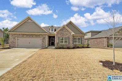 46 Waterford Pl, Trussville, AL 35173 - #: 838248