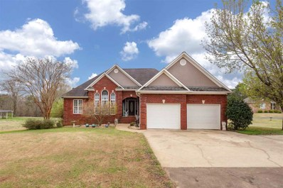 430 Sunset Rd, Pell City, AL 35128 - #: 841449