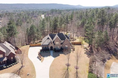212 Wild Timber Pkwy, Pelham, AL 35124 - #: 845148