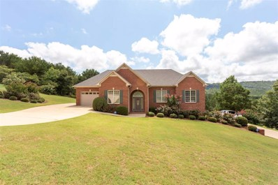 303 Valley View Ln, Oneonta, AL 35121 - #: 857591