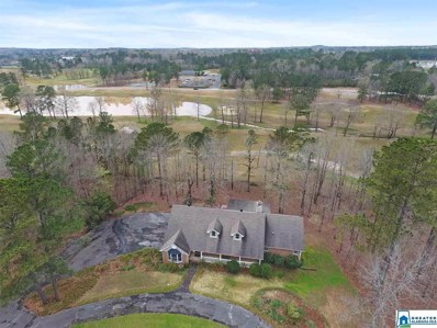 3 Country Club Dr, Calera, AL 35040 - #: 863542