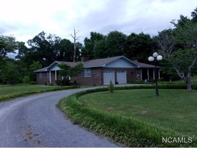 2271 Co Rd 599, Hanceville, AL 35077 - #: 100991