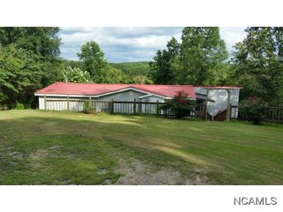 510 Co Rd 206, Crane Hill, AL 35053 - #: 101163