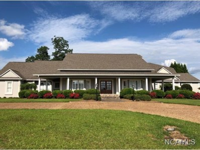 1742 Morning Dr, Cullman, AL 35055 - #: 103201