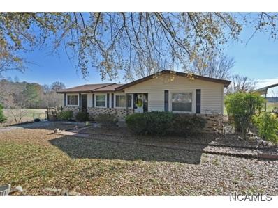 11797 Co Rd 222, Crane Hill, AL 35053 - #: 104181