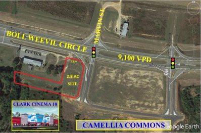 0 Boll Weevil Circle, Enterprise, AL 36330 - #: 165116
