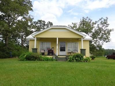 497 Cowarts Creek Rd, Ashford, AL 36312 - #: 166406