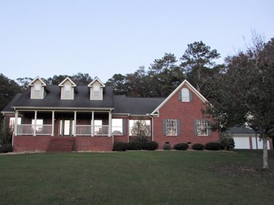 158 Wayne Ford Road, Newton, AL 36352 - #: 167244