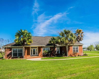 316 Willow Oaks Drive, Headland, AL 36345 - #: 168479