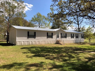 4459 Gene Terry Road, Cottonwood, AL 36320 - #: 168724
