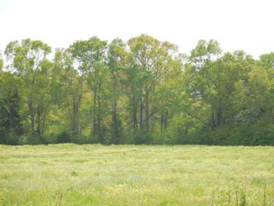 8 Acres Hardy Rd 8 Acres, Rehobeth, AL 36301 - #: 168850