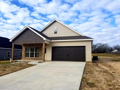 116 Village Lane, Headland, AL 36345 - #: 169266