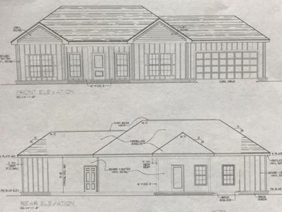 335 County Road 33, Ashford, AL 36312 - #: 169273